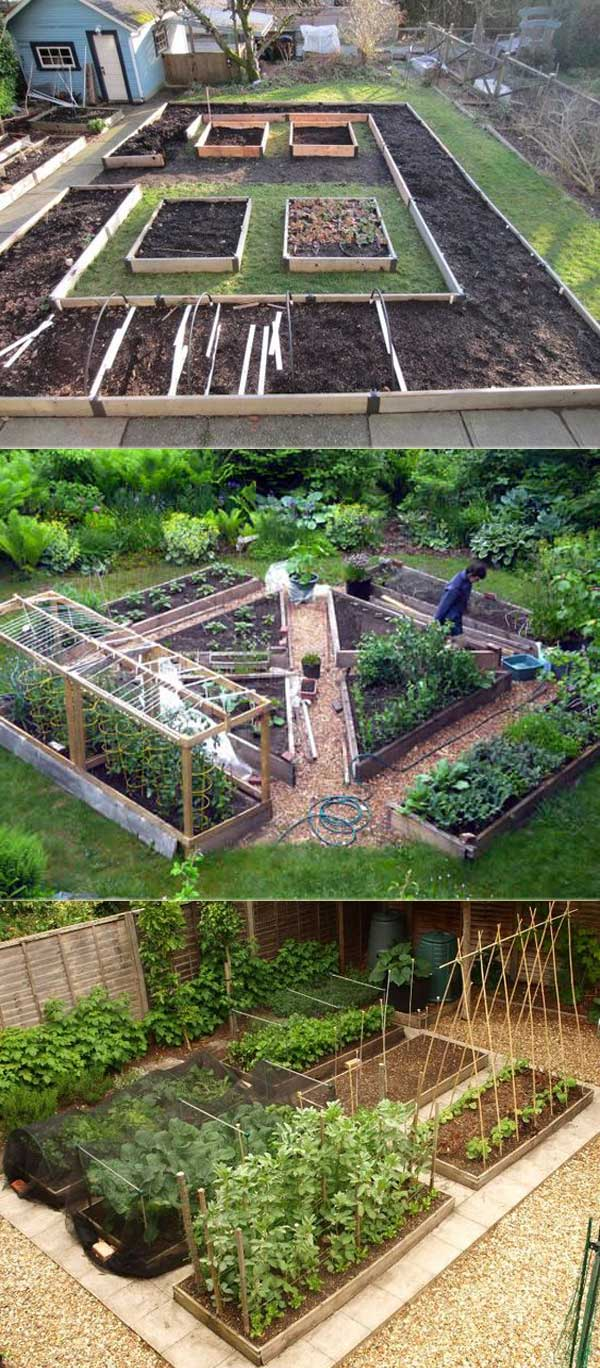 the secrets to growing a vegetable garden in small space – lazytries