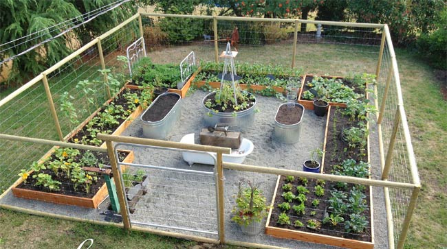 1000 Ideas About Enclosed Bed On Pinterest: The Secrets To Growing A Vegetable Garden In Small Space