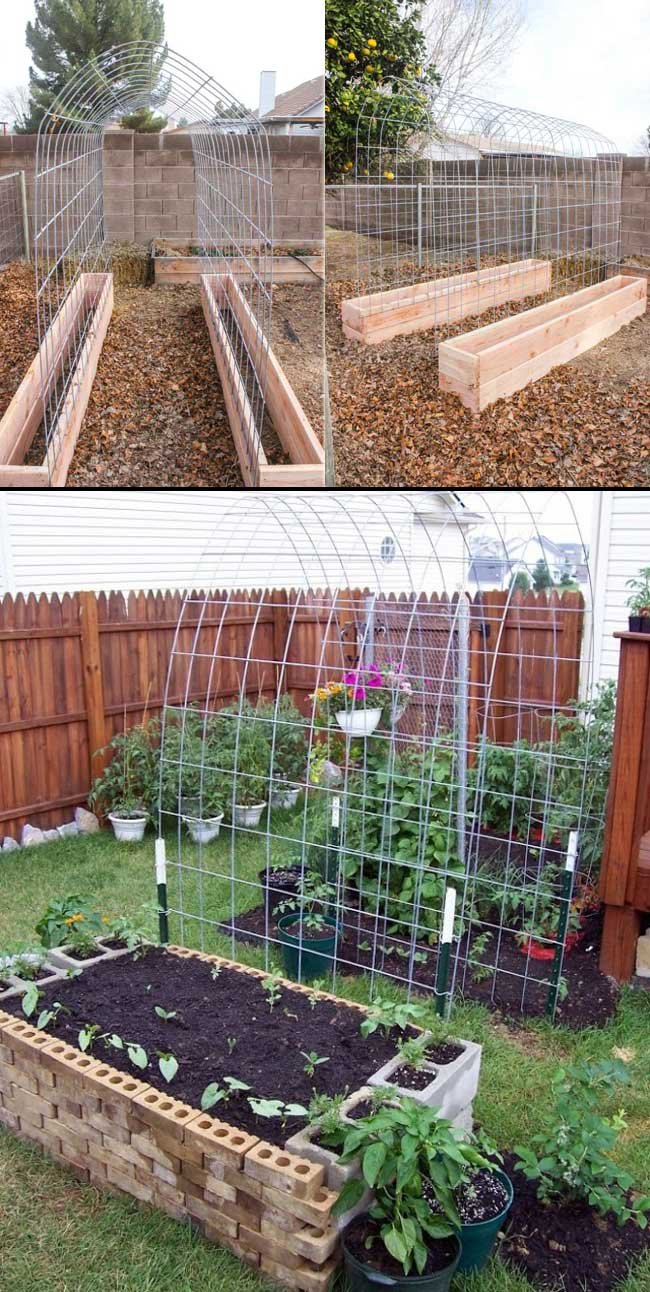The Secrets to Growing a Vegetable Garden in Small Space ...